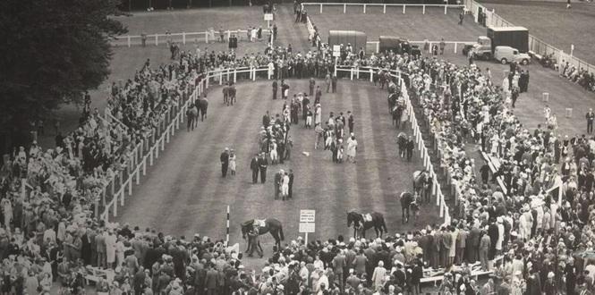 Goodwood Racecourse History