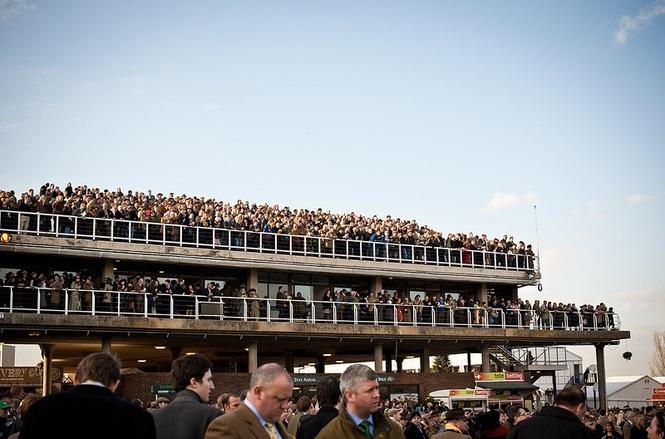 Cheltenham Races Crowd