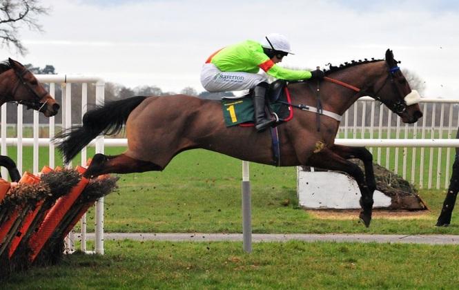 Horse Race Hurdles