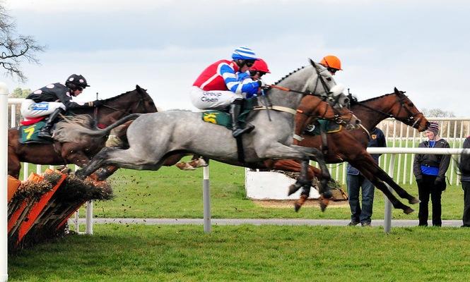 Horse Race Jump