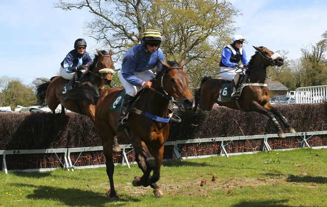 Horse Race Jumping