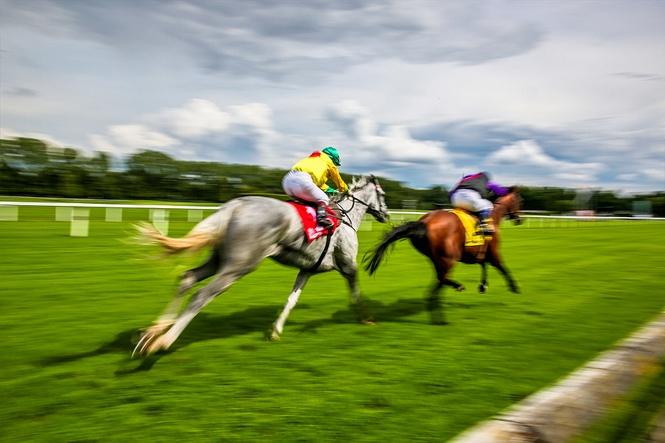 Horse Sprint