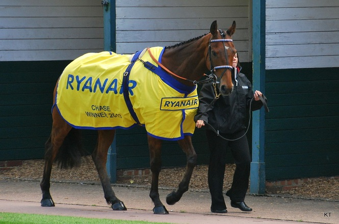 Ryanair Chase Winner 2013